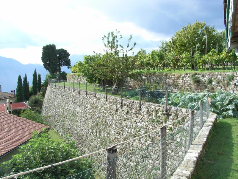 The old castle wall surrounds the house