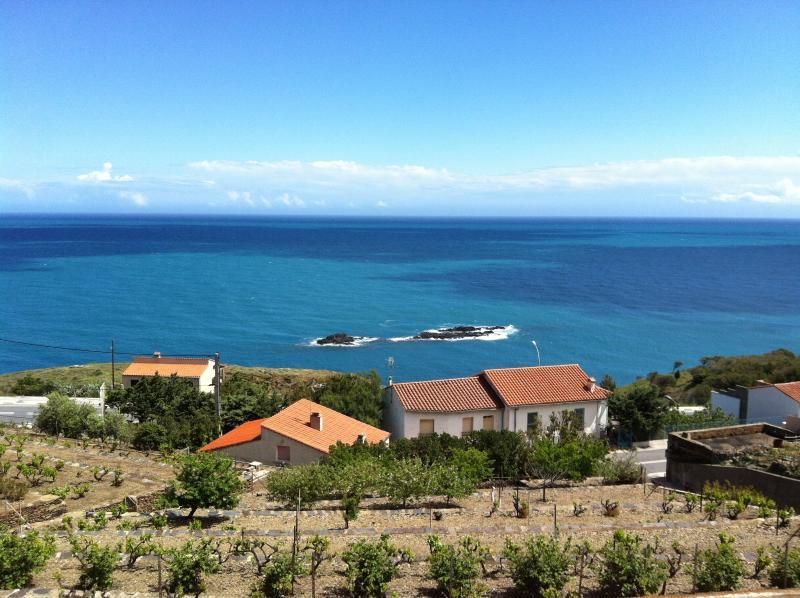 vue mer imprenable depuis la terrasse