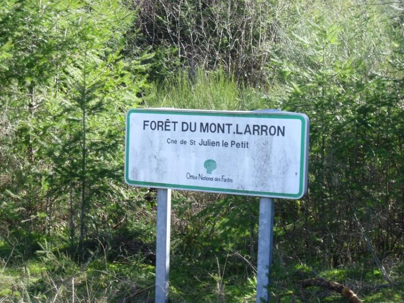 Mont Larron, a great walk to panoramic views