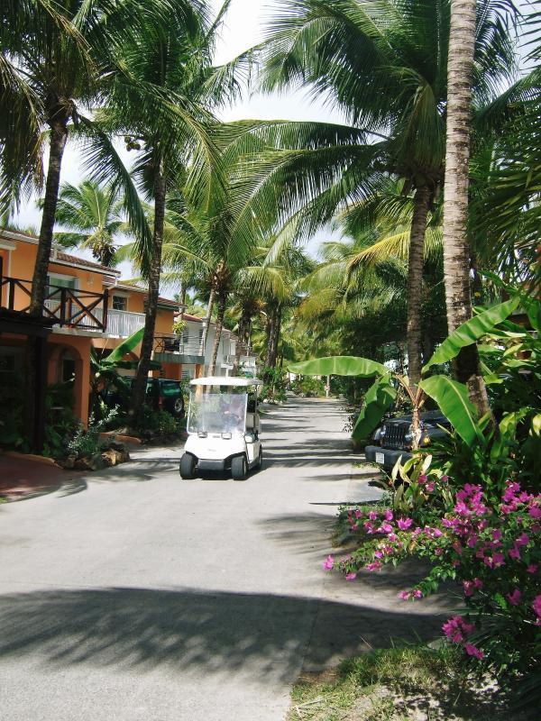 Approach to Villa 231C