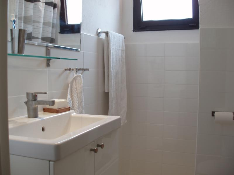 Bathroom, shower and WC