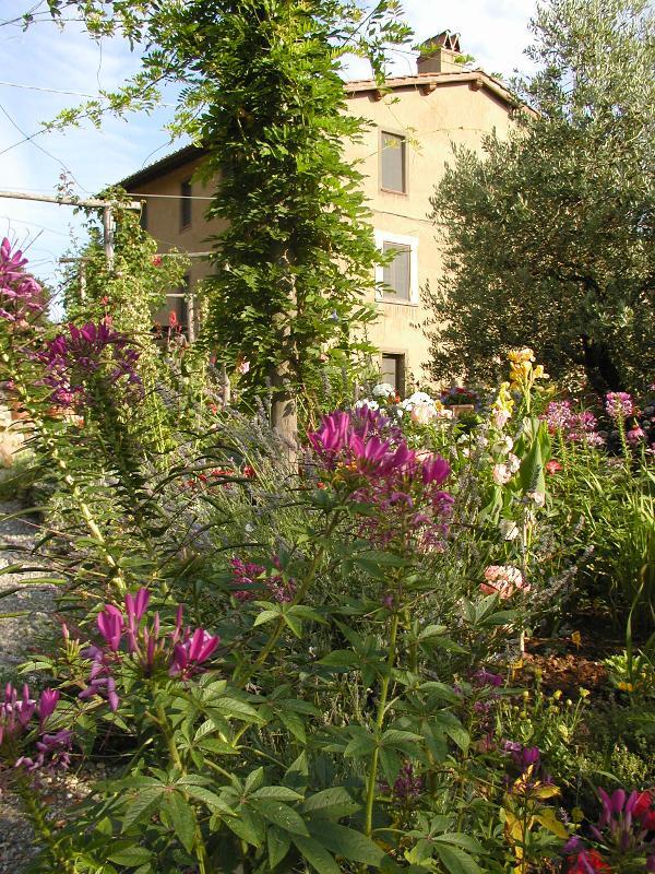 Deel van de tuinen van de Villa
