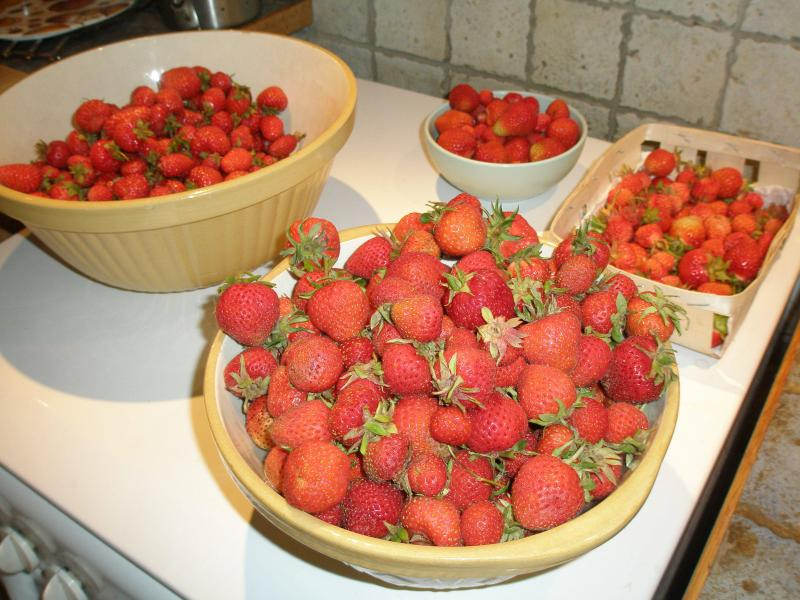 Strawberries from the potager