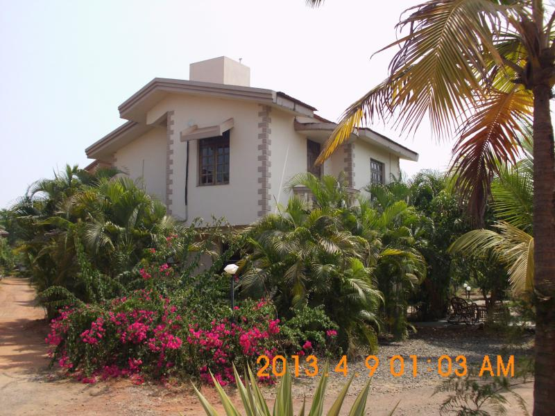 Sunset Sea View Beach Villa C12, back view surrounded by Palm trees & shaded Patio Area