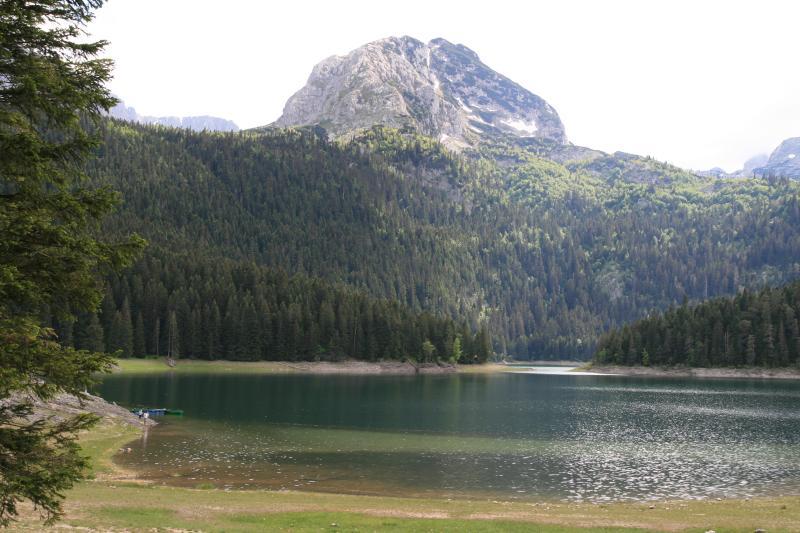 Great walks around Scenic Black lake (<10 minutes drive away)