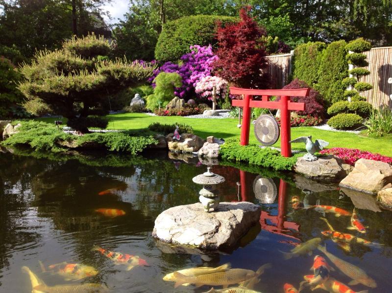 Ein Blick über den großen 110.000 L Schwimm,-u.Koiteich in den herrlichen Japangarten.