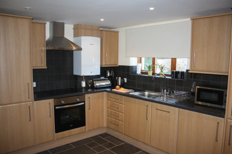 Modern kitchen with quality built-in appliances