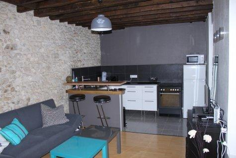 Duplex cosy et chic, holiday rental in Samois-sur-Seine