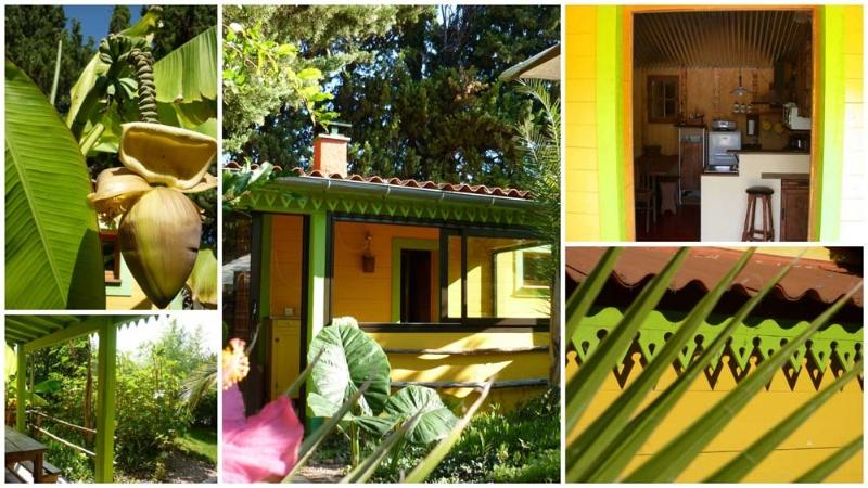 MAS DEL PICAPEDRER - La Case, holiday rental in Canohes