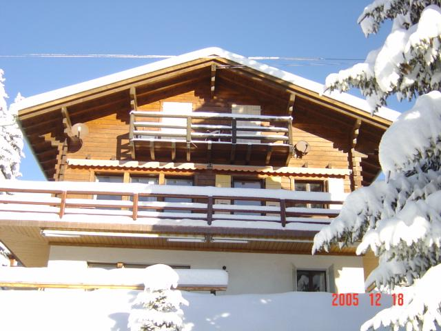 Chalet Fleuron from the garden
