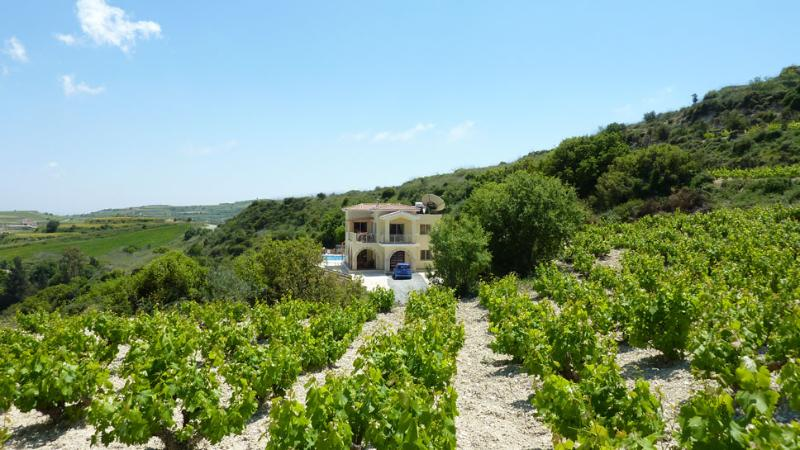 Villa view from the vineyard