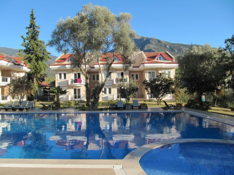 View of pool, apartment (top middle) and mountains