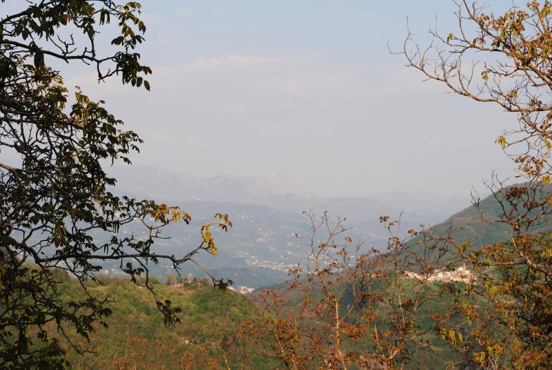 View from Vergemoli