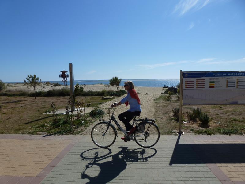 Isla Canela... perfecto para el ciclismo. Alquiler de bicicletas disponible