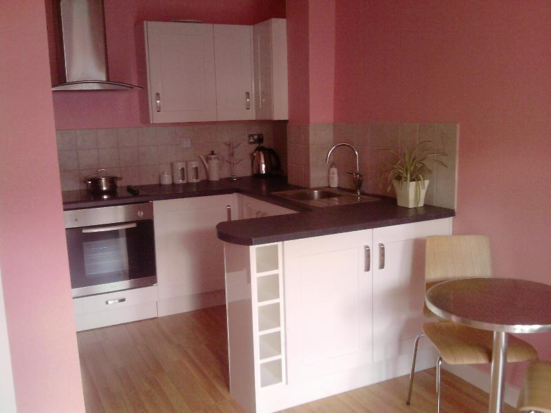 Open plan Kitchen with fridge/freezer, electric oven/hob, washing machine, toaster and kettle