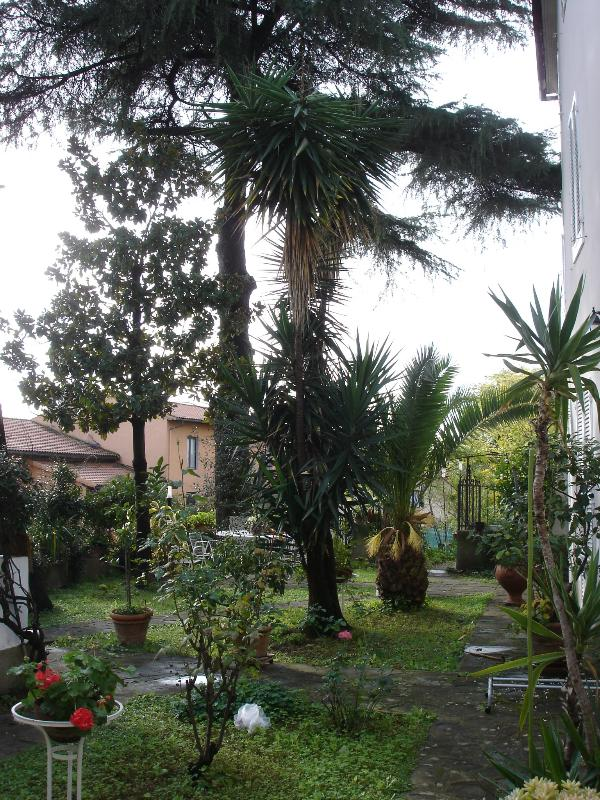 Vista sul giardino privato di proprietà