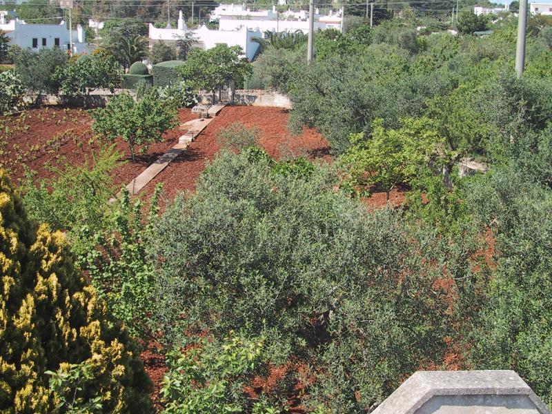 Garden from Villa roof