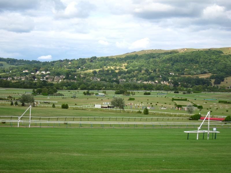 Great location for Cheltenham racecourse- an easy walk across the park