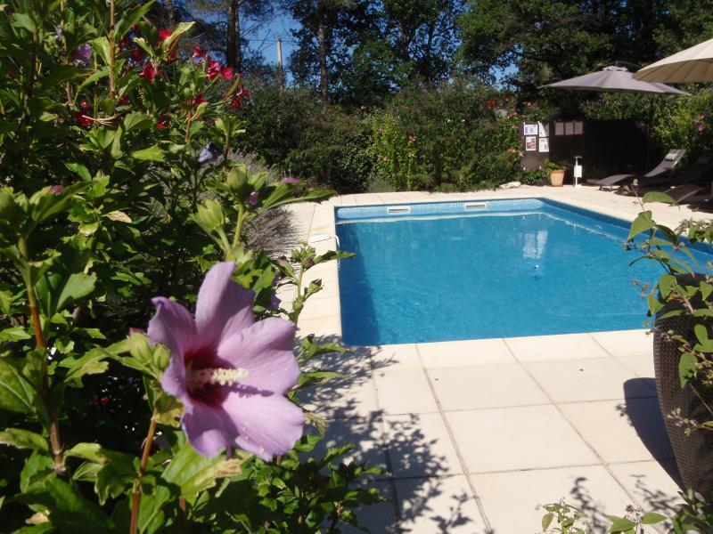 Pool Le Diamant Noir
