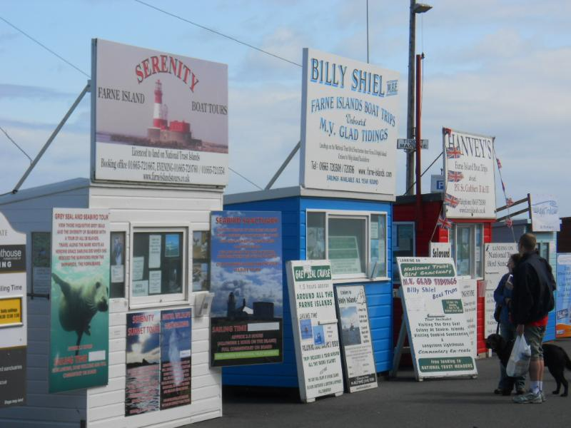 Boat Trips from Seahouses