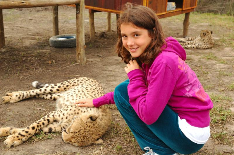 Yes you can pet a cheetah in Plett!