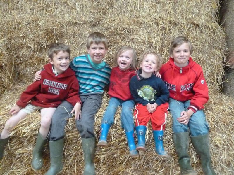 5 en la granja
