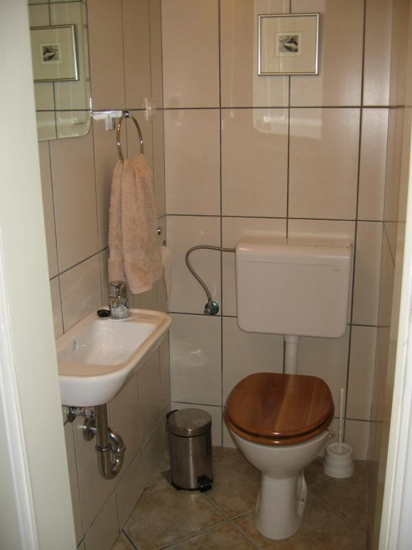 Additional toilet and basin