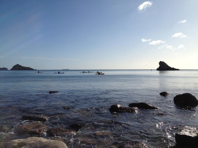 Kayaking on Meadfoot beach 10 min walk away. Parking & a café, beach huts for hire.