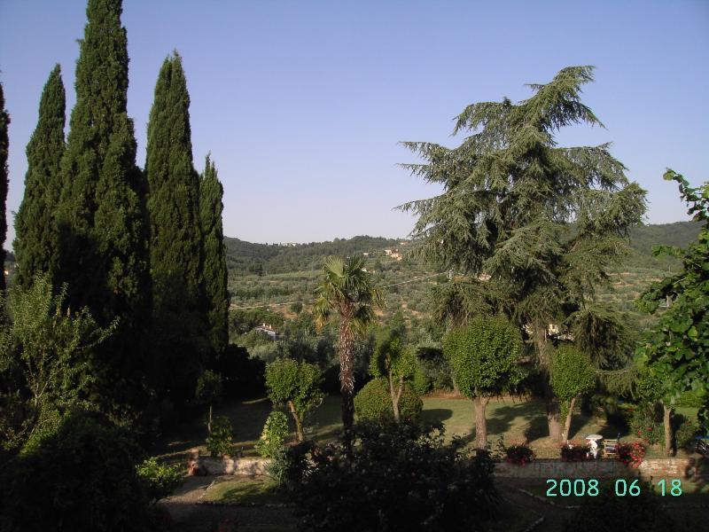 giardino con piante secolari adiacente alla casa