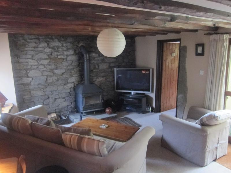 Spacious Lounge -  Cosy & peaceful, wood burner, complete entertainment package