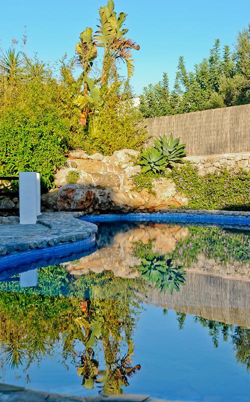 Godere di pace e tranquillità nelle prime ore del mattino intorno alla piscina.