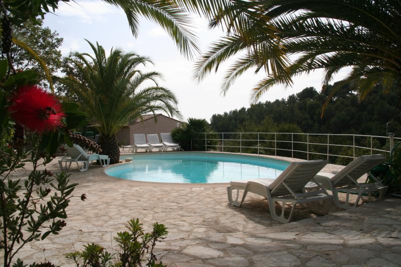 #Cannes Near, Villa Eden Roc swimmingPool Sauna Jacuzzi & Quiet, 9/11 persons, casa vacanza a Roquefort les Pins