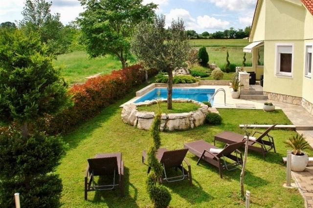 In fornt of the house - lawn with pool, olive tree and place to sunbathing