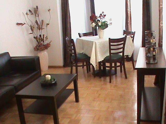 Ermolaos livingroom