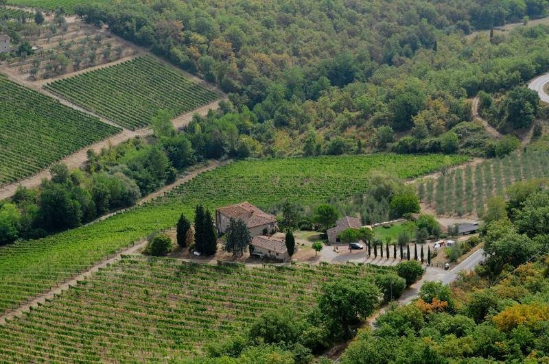 Podere Val delle Corti, holiday rental in Radda in Chianti