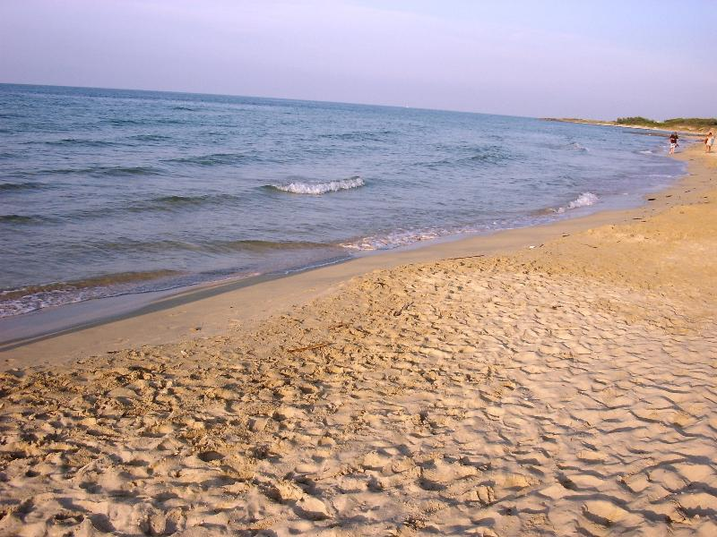Torre Guaceto-15 minutes takes you to our beautiful Adriatic coast-coves beaches and Lidos