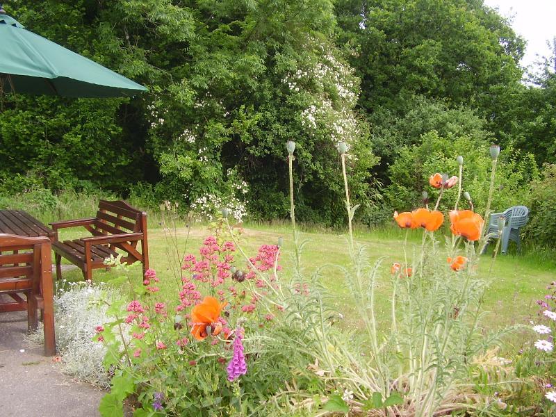 Cottage 2 Ty Golchi's garden