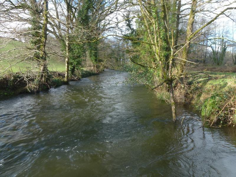 River Lynher at Wagmuggle in January