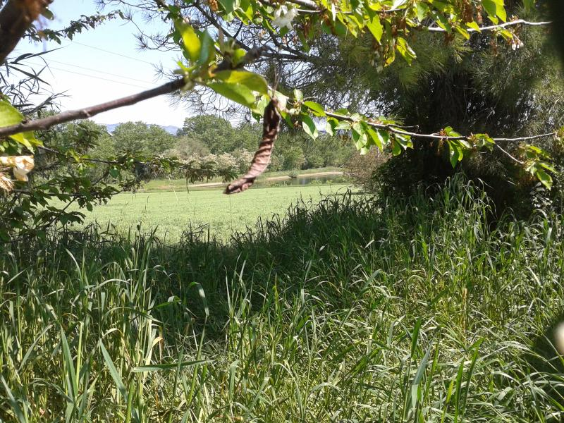 terreno circostante il casolare di proprietà e laghetto