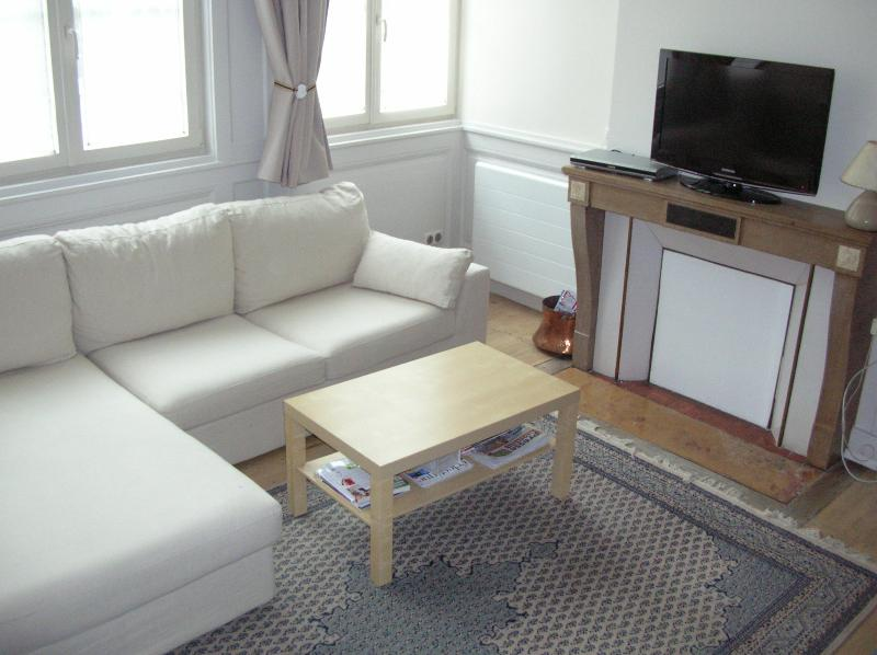 T1 bis 41 M2 centre ville, holiday rental in Dole
