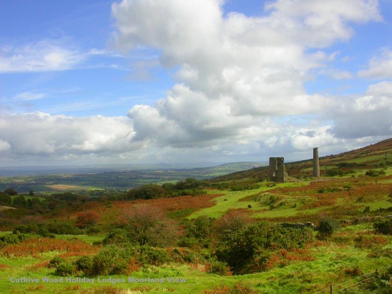 Moorland heaven