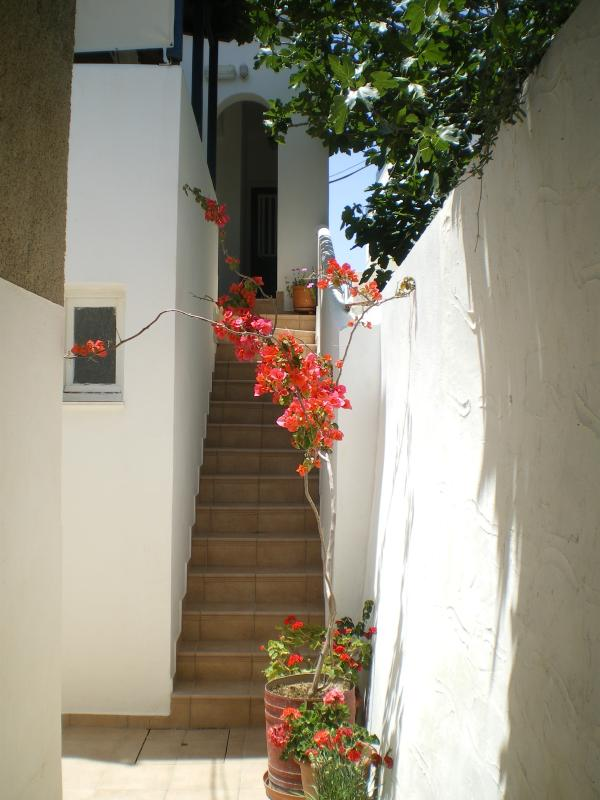 Staircase up to the first floor