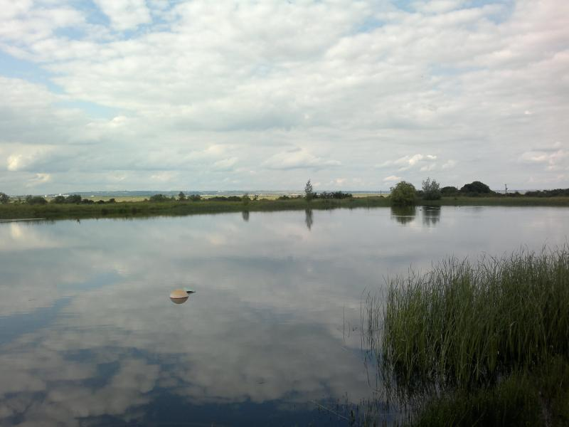Trout Fishing on Decoy Farm Reservoir