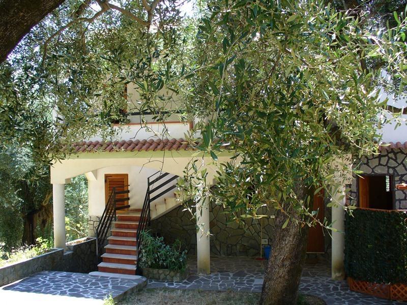 VILLA CECILIA/apartment 2, holiday rental in Marina di Pisciotta