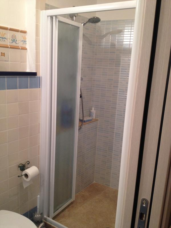 Shower with travertine stone