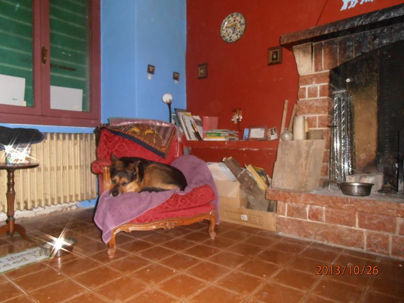 Lounge with wood burning fire, open windows to the 9 hectares of land pets welcome
