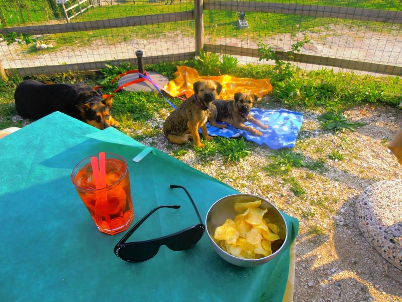 Aperativo in Navazzo over looking Lake Garda take your pets and eat al fresco and enjoy Monto Baldo