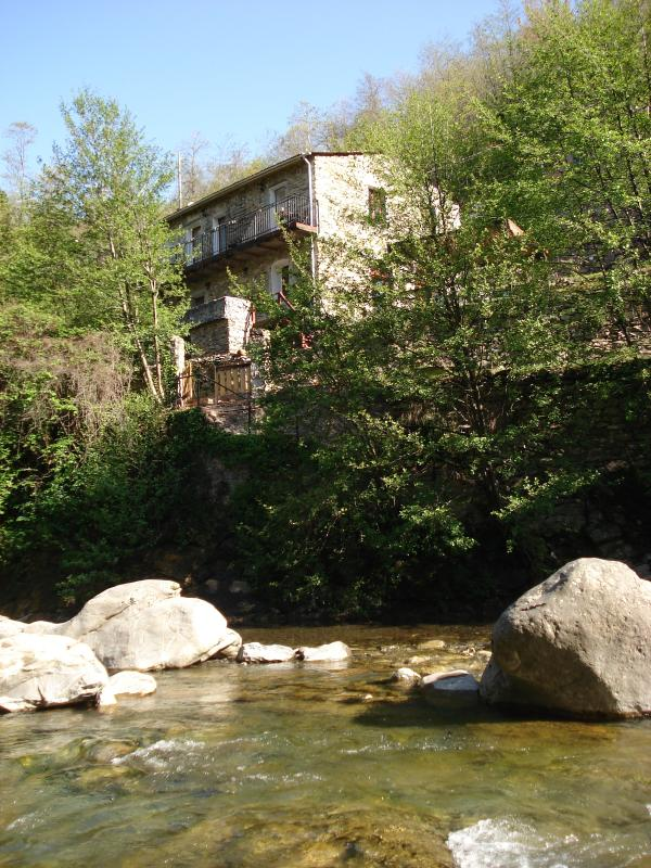 mill from river