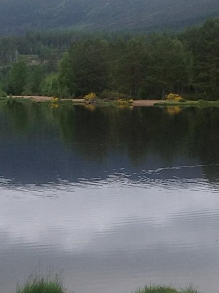 Loch Morlich - 20 minutes from Sunbury.