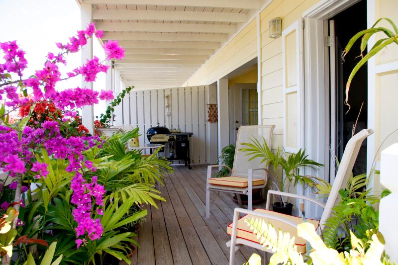 Spacious covered veranda with bbq